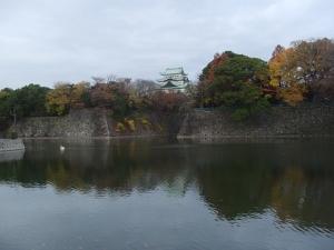 名古屋城(とコブハクチョウ)